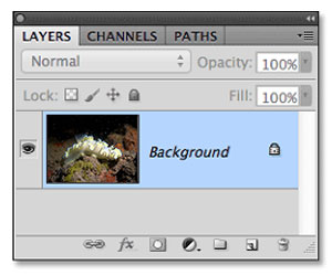 removing back scatter with photoshop