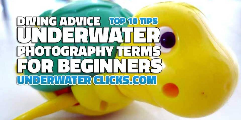 Top 10 Tips Underwater Photography Terms For Beginners