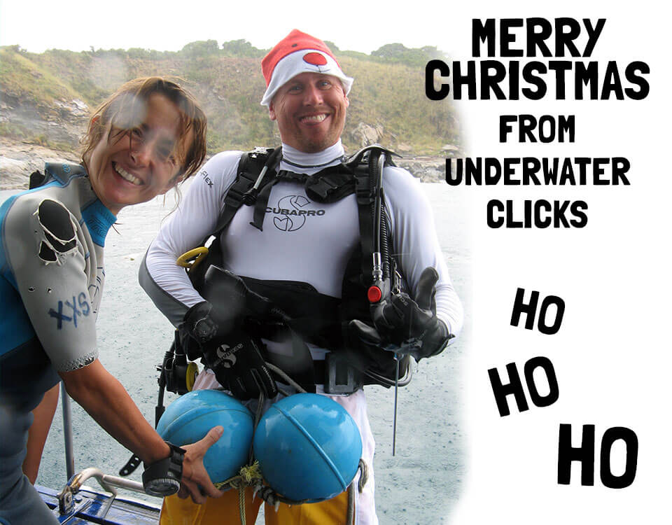 #10 Top 10 Christmas Divers