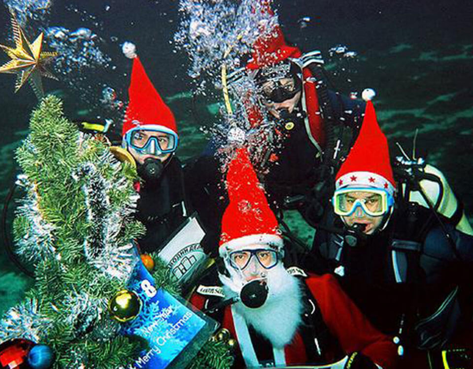 #4 Top 10 Christmas Divers