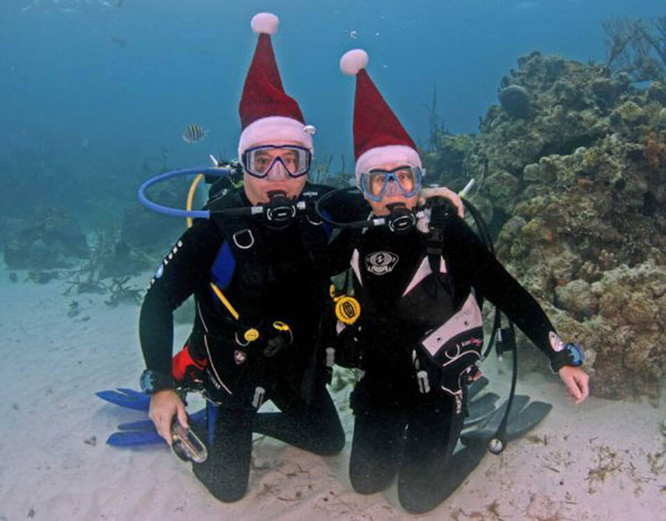 #5 Top 10 Christmas Divers