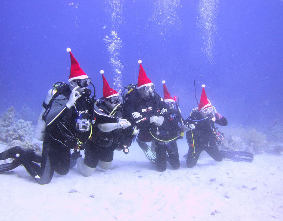 #8 Top 10 Christmas Divers