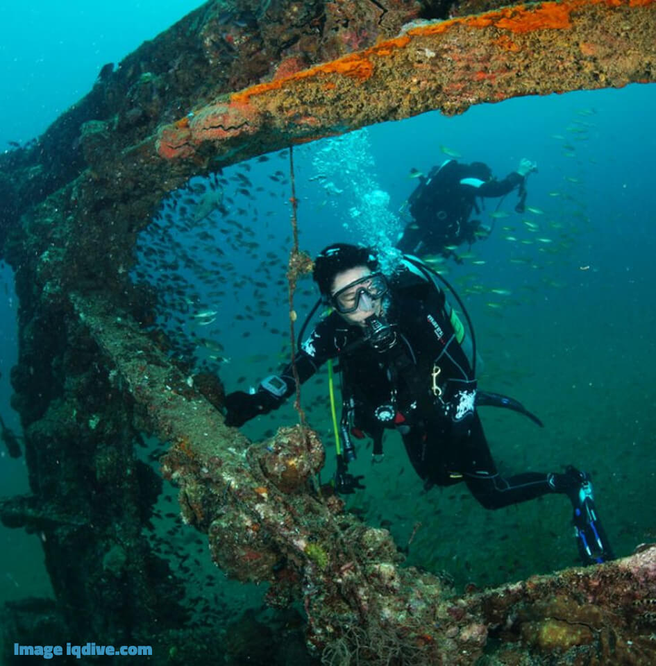 Dive Similan Islands Thailand - Boonsung Wreck