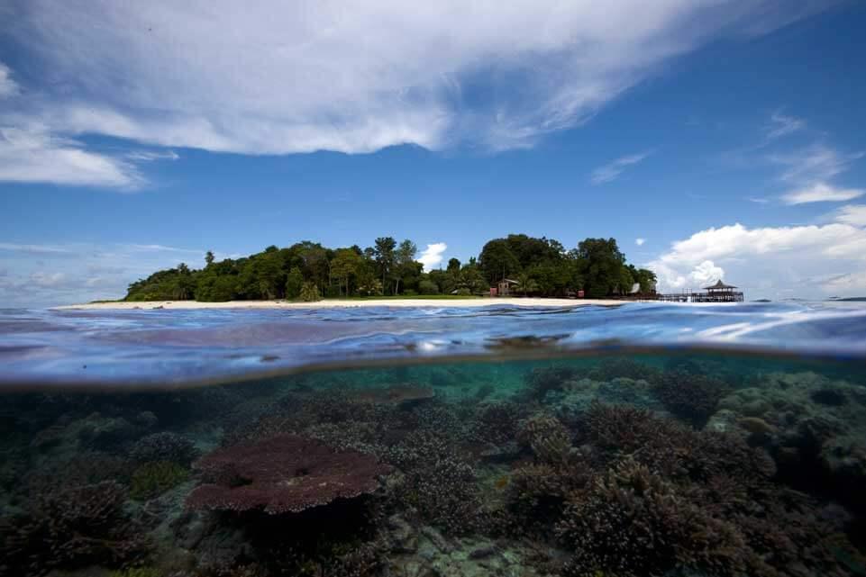 Diving sipadan island sabah malaysia - Sipadan dive sites ...