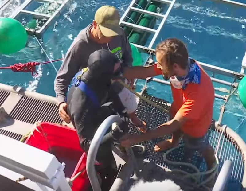 Diver Escapes Shark Inside Cage Diving Mexico